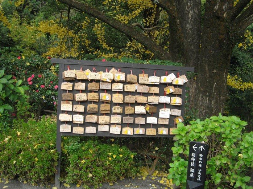 cat shrine5