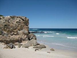 Seals, Kangaroo Island SA